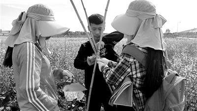 呼伦贝尔学院:农学生学在草原-中国教育新闻网