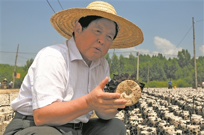 """""""蘑菇院士""""李玉:小木耳,大产业"""